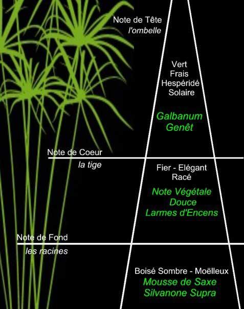 Parfumerie Generale e Facebook presentano la piramide olfattiva di PG24