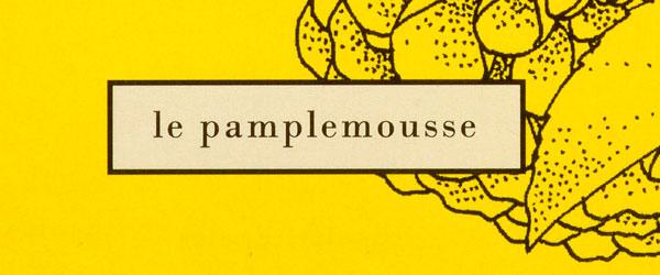 Le Pamplemousse. La nuova fragranza di Miller Harris profuma di sole