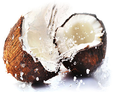 Coconut. Scent of the Summer