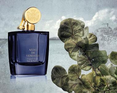 Copal Azur. La nuova fragranza incensata di Aedes de Venustas arriva dal lontano Yucatan
