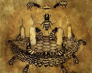 Cellarius, Phoenicis, Mel Mellis e Indica. Quattro fragranze luminose per Aedes de Venustas