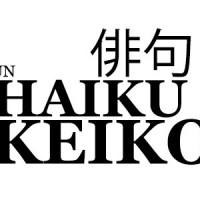 vincitori giveaway haiku