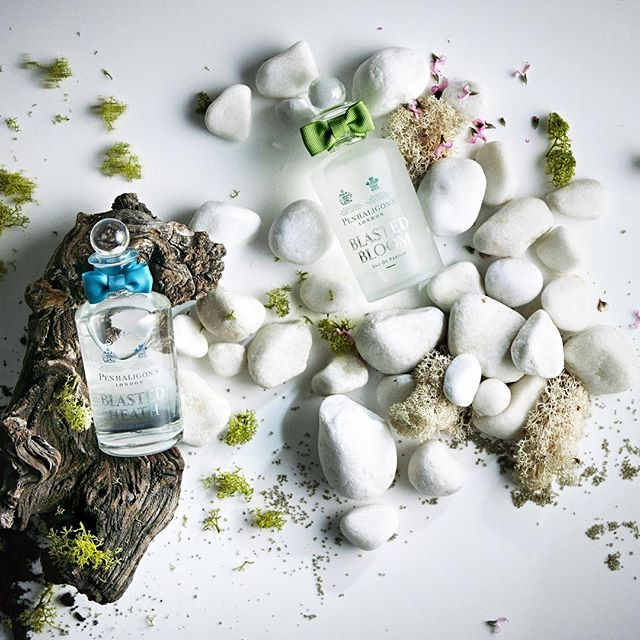 Con le fragranze di Profumeria Gambarini l'olfatto non va mai in letargo