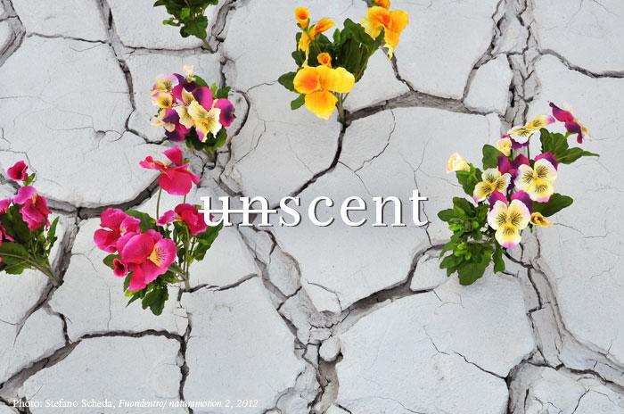 unscent 2016