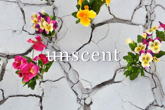 URBAN SCENT GARDEN. La sesta edizione di UNSCENT è un giardino segreto nel cuore di Milano