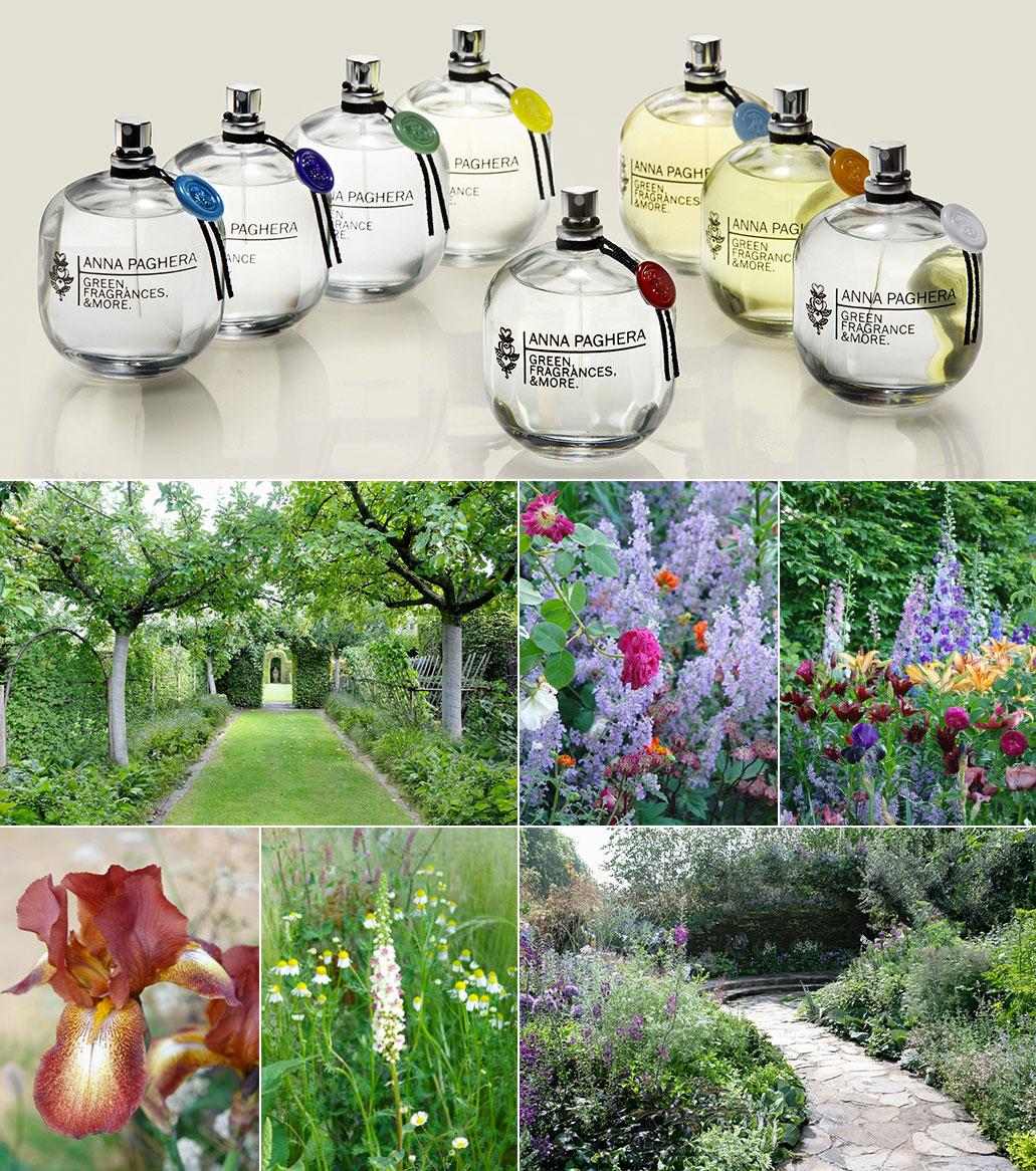 giardini e fiori verdi