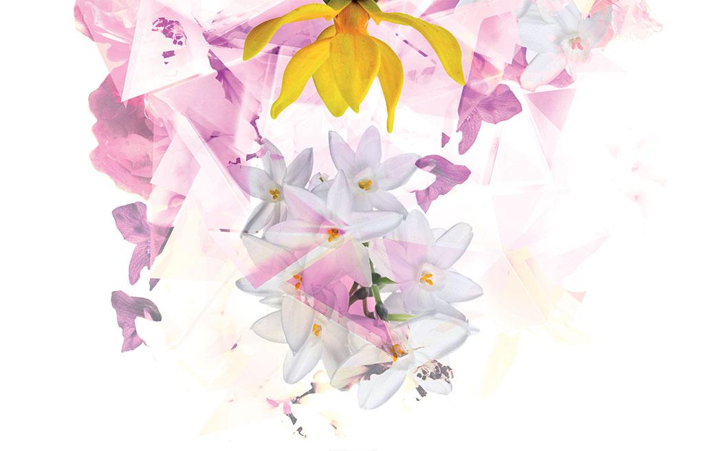 profumo fiorito