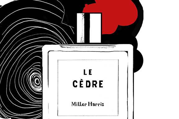 Le Cèdre. Un legnoso speziato amplia la Perfumer's Library di Miller Harris