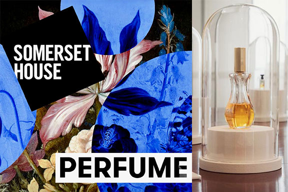 Perfume: A Sensory Journey Through Contemporary Scent