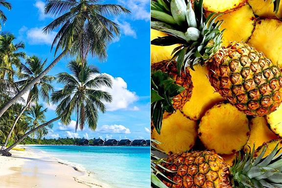 Quale profumo scegliere per sentirsi ancora in vacanza