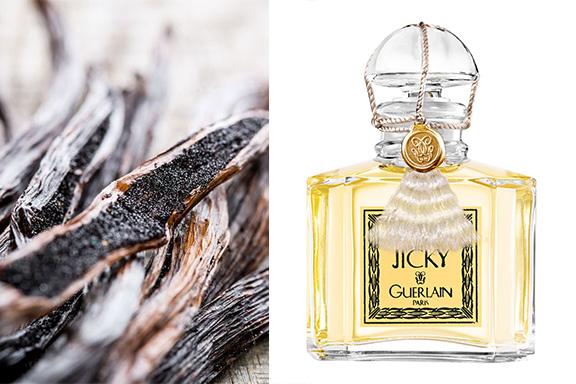 Magnifica vaniglia: le fragranze vintage dell'oro nero della profumeria